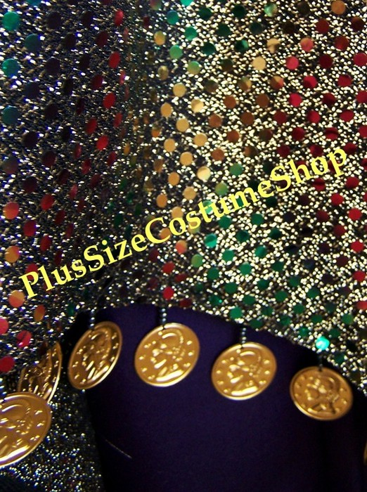 handmade plus size renaissance esmeralda gypsy fortune teller halloween costume dress gown up close sequin skirt and gold coin trim